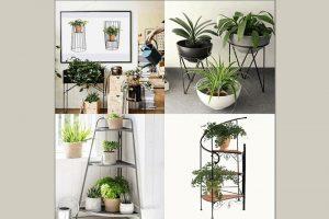 kệ trồng cây đẹp